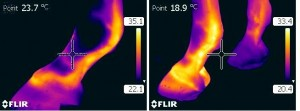 imagerie thermique1
